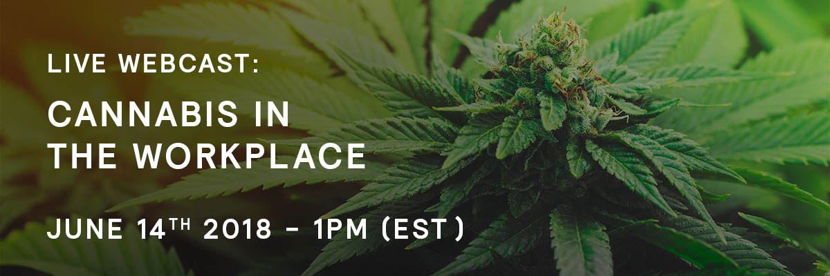 Cannabis in the Workplace - Webcast